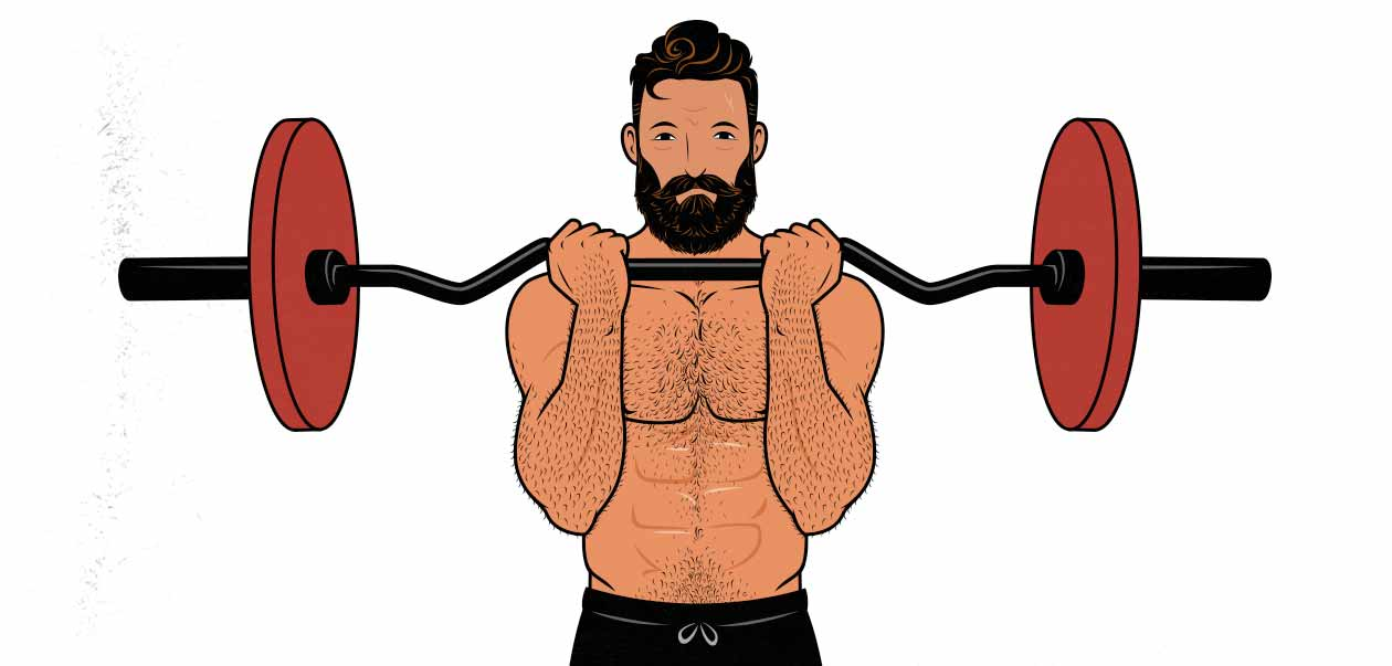 Illustration of a man doing a barbell curl with a curl-bar/EZ-bar