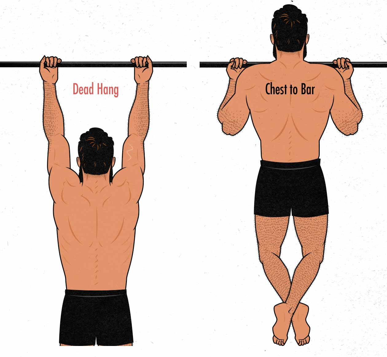 Illustration of chin-ups done with a full range of motion: from a dead hang and bringing chest to bar.