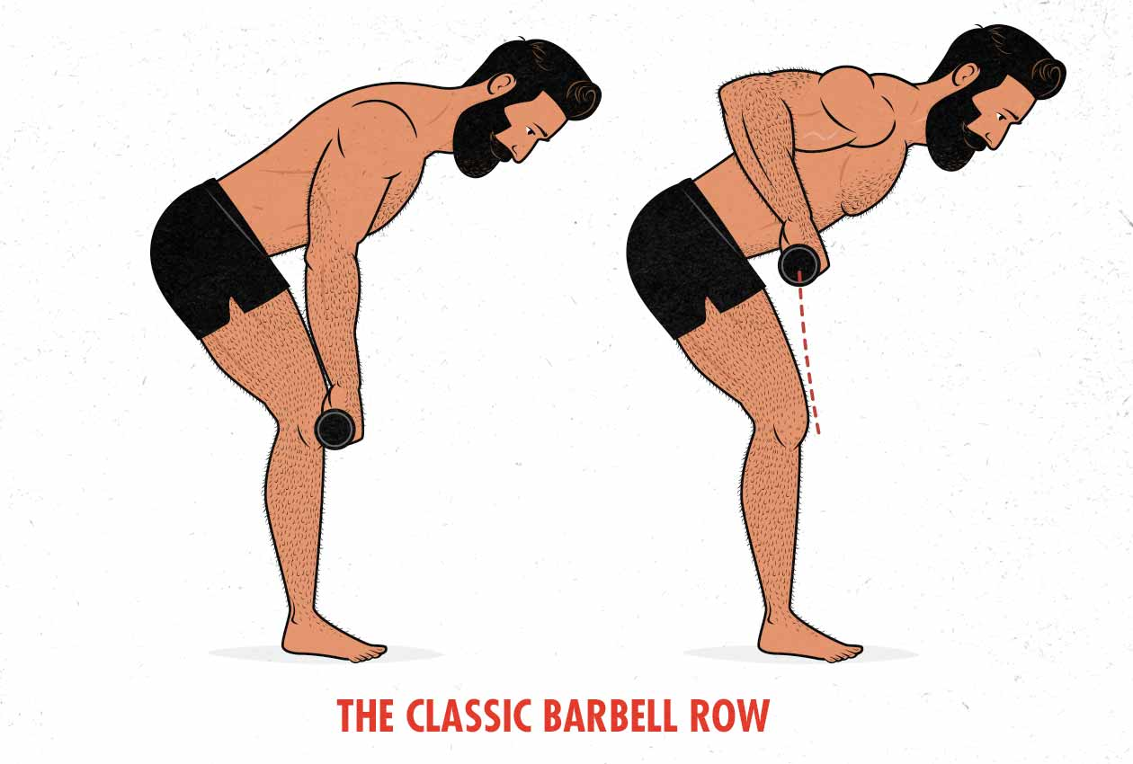 Illustration of a man doing a classic barbell row, as a bodybuilder would.