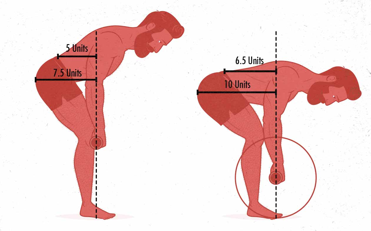 Diagram of the hip and spinal erector demands in the barbell row.