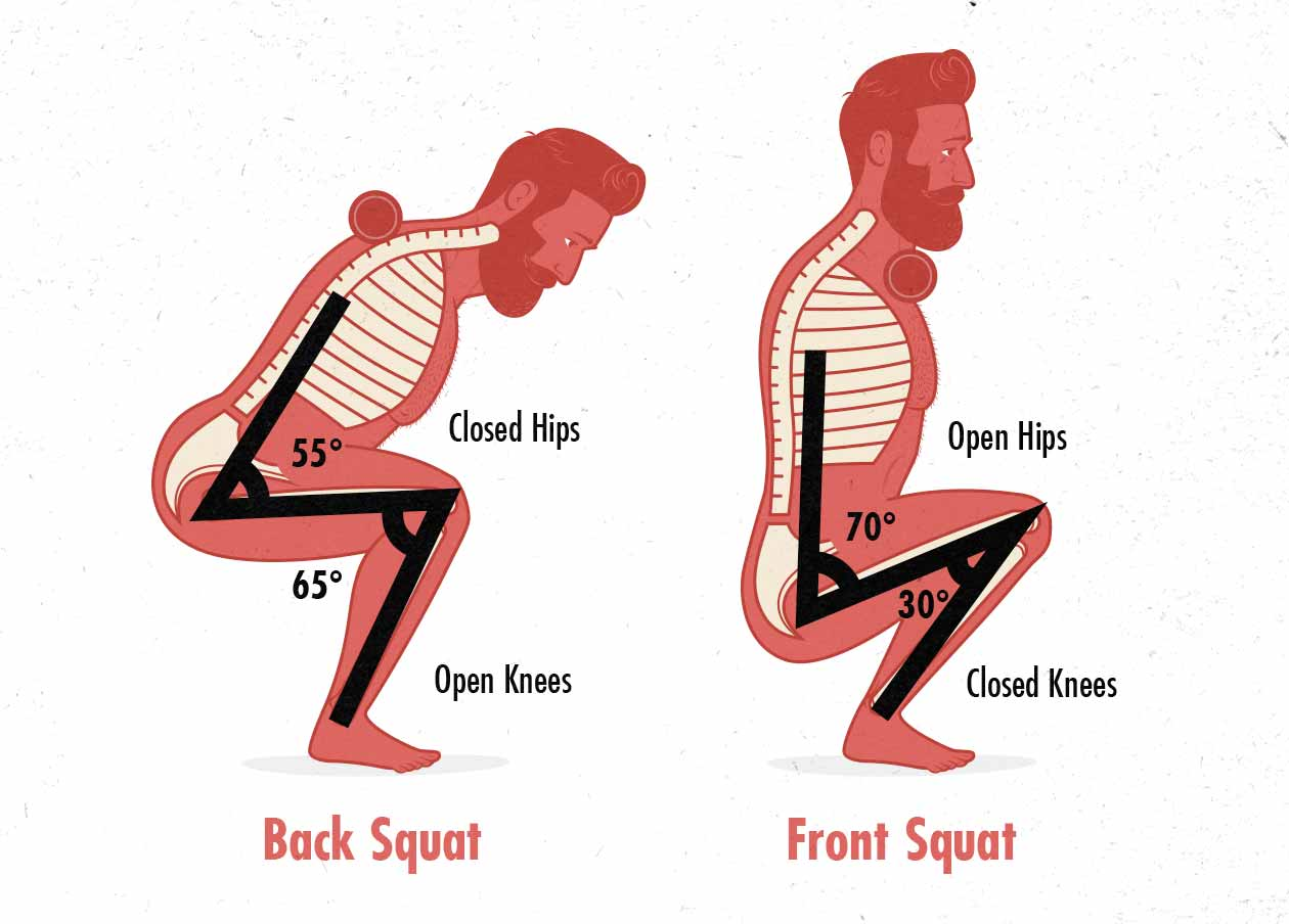 Diagram of hip and knee angles in the back squat and front squat.
