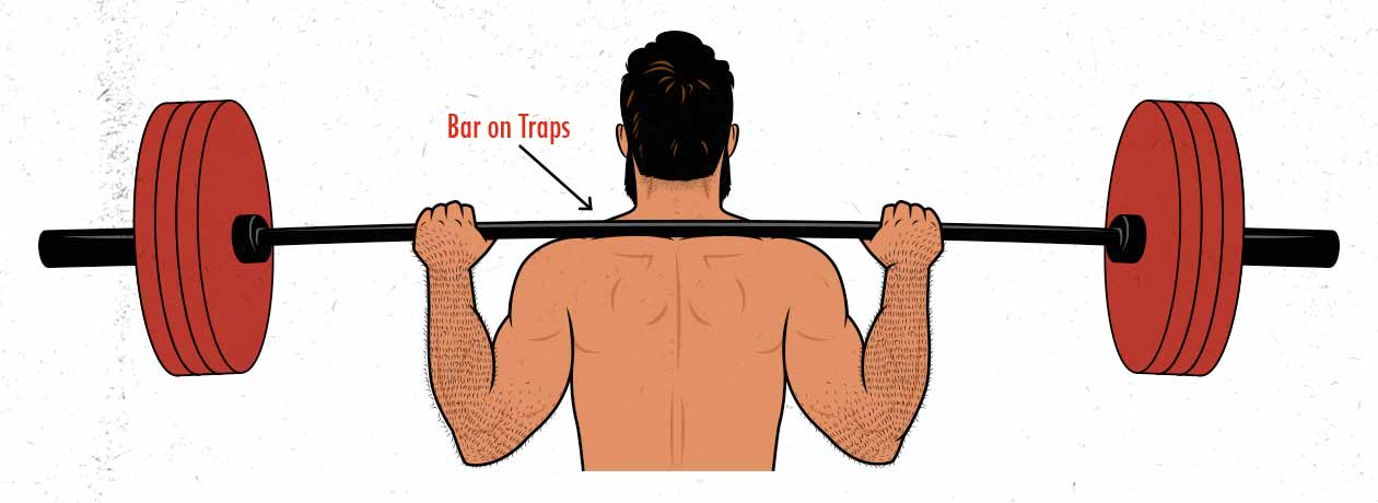 The barbell position in the high-bar back squat diagram / illustration.