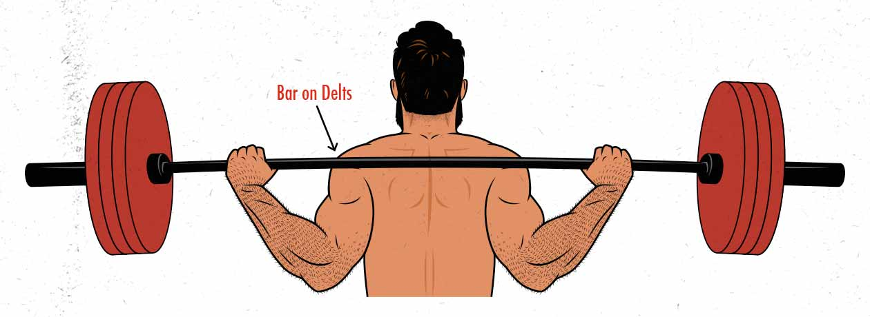The barbell position in the low-bar back squat diagram / illustration.