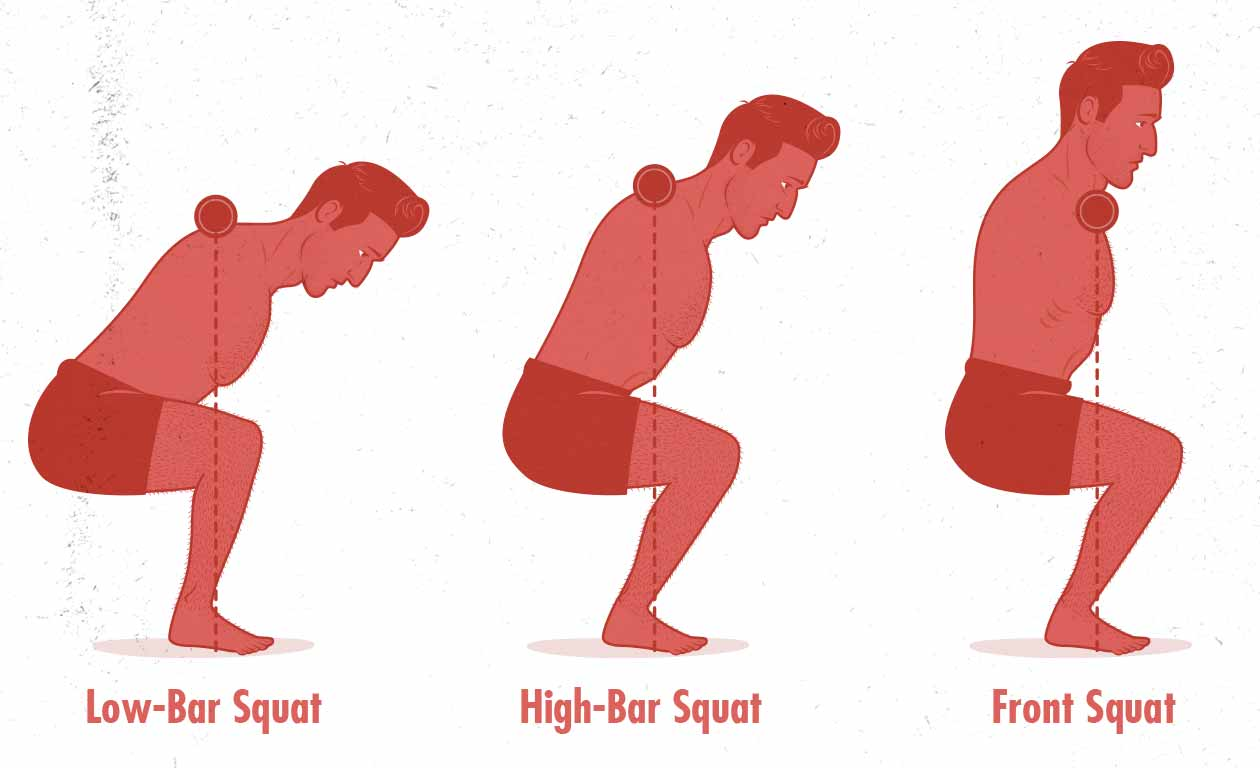 Torso angle in the low-bar back squat, high-bar back squat, and barbell front squat (diagram / illustration)