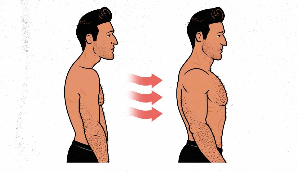Ilustración del cambio en la postura de un hombre al ganar músculo.