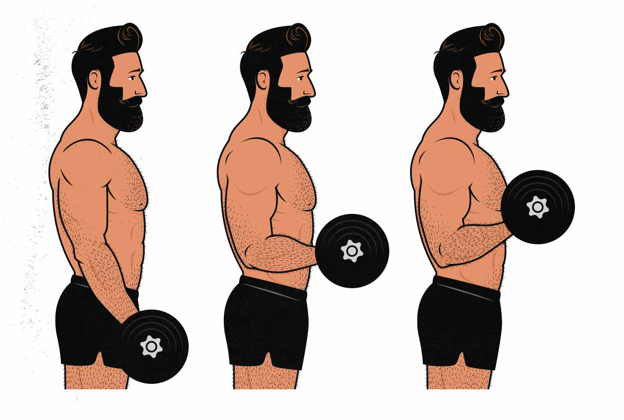 Illustration of a man doing dumbbell biceps curls.