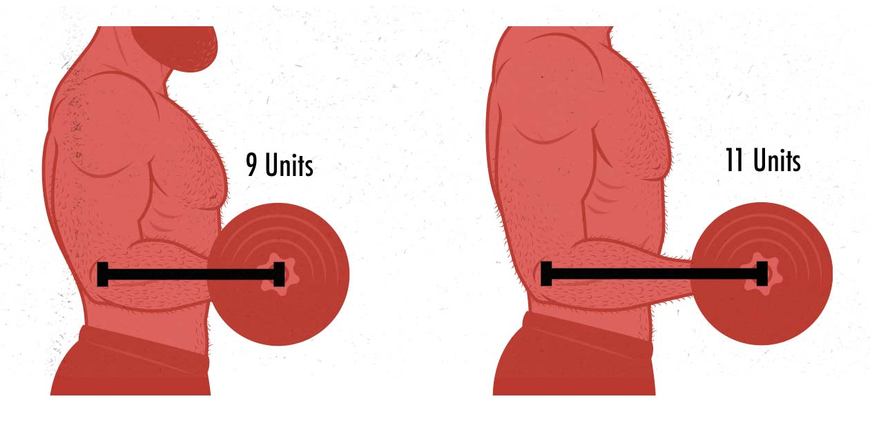 Illustration of how limb length can affect strength while lifting weights.