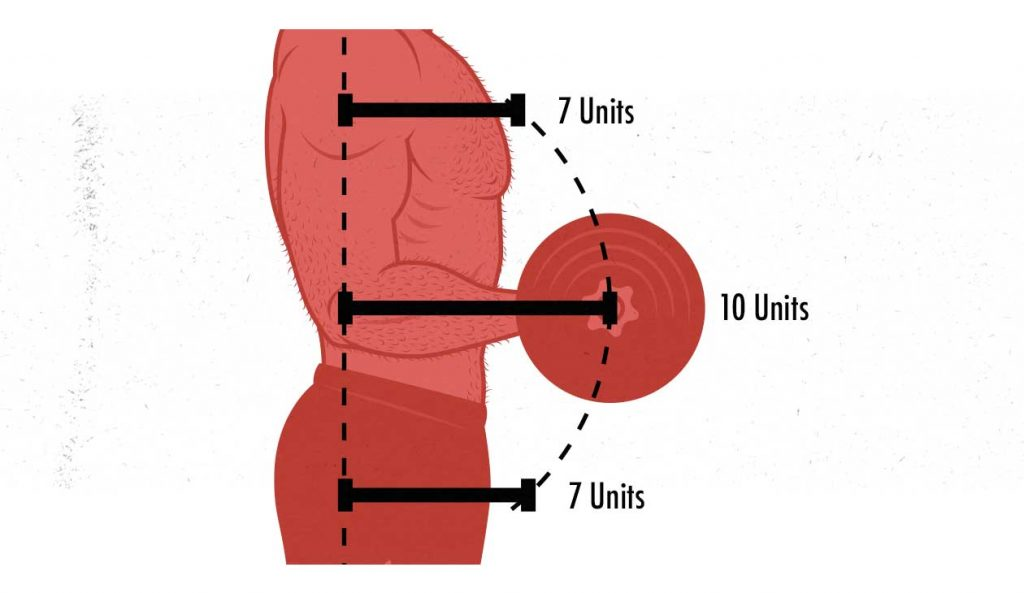 Illustration of the moment arms in a biceps curl