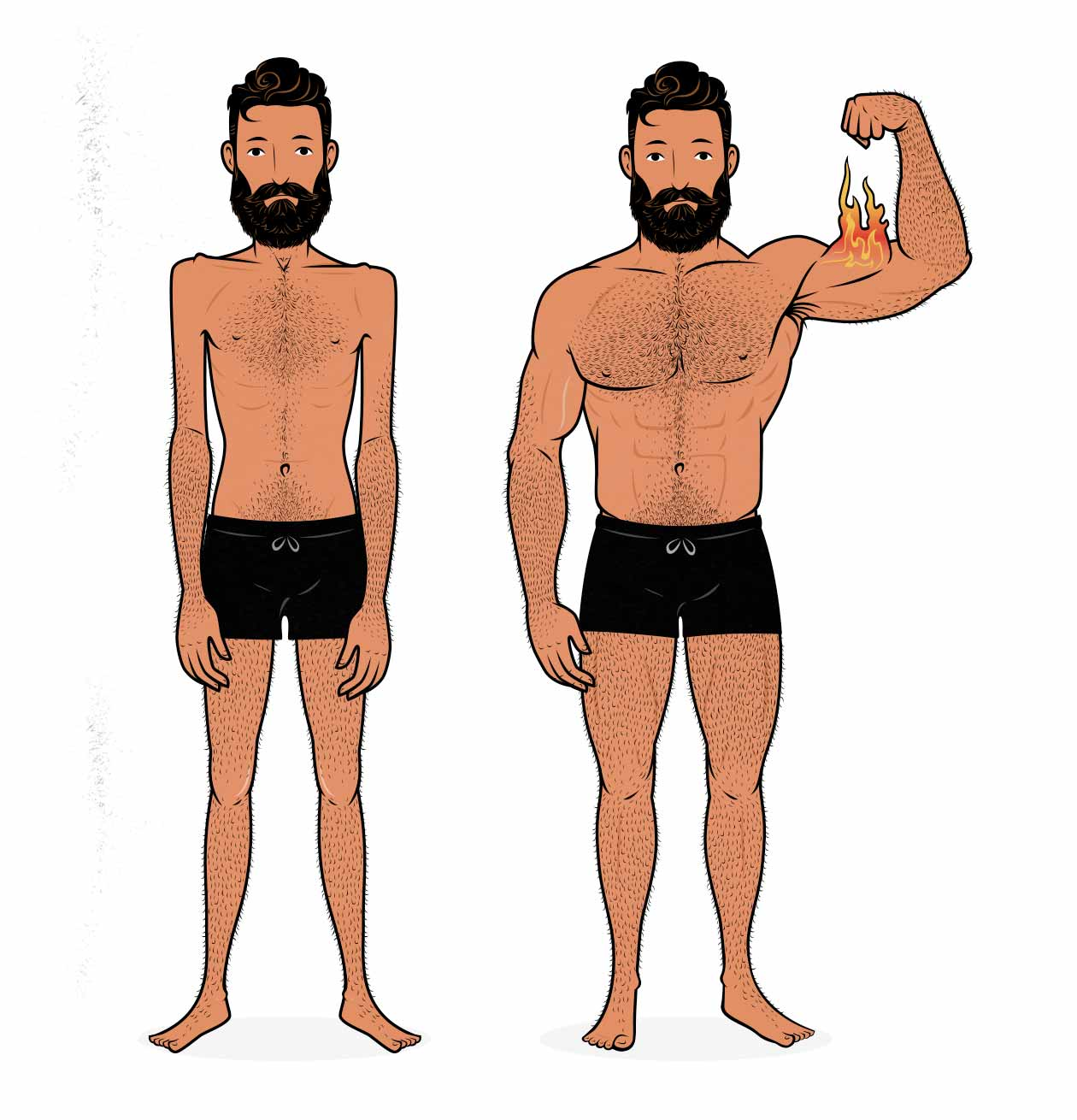 Before/after illustration of a skinny man becoming muscular.