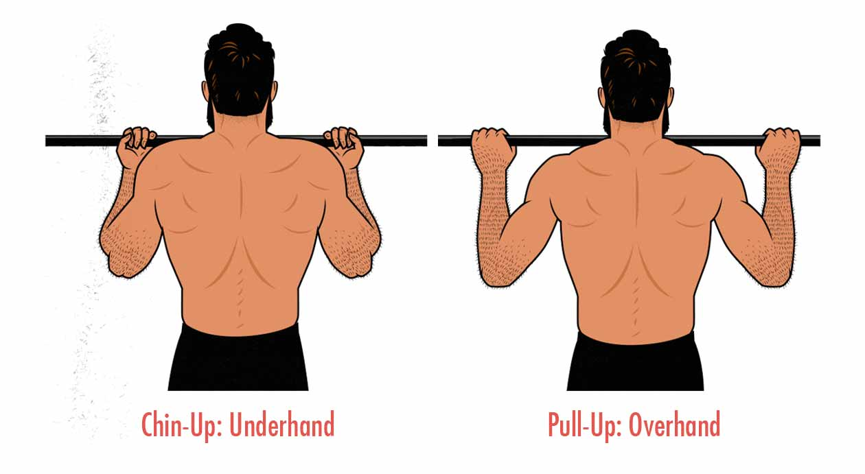 Illustration of the difference between underhand chin-ups and overhand pull-ups.