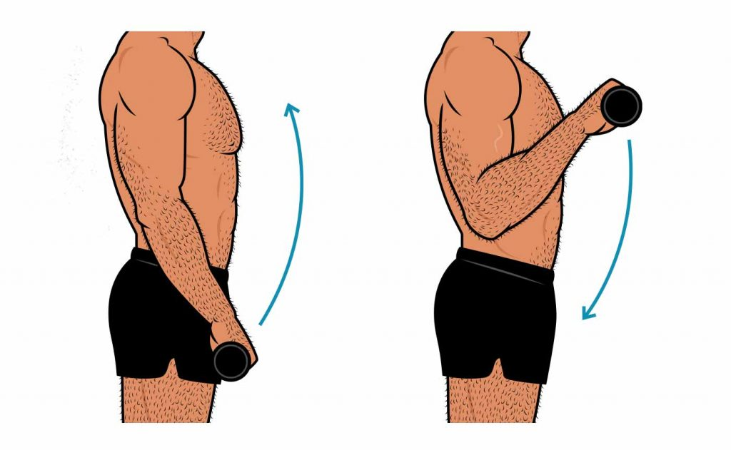 Illustration of a man doing a barbell reverse curl.