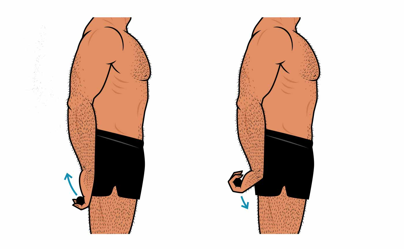 Illustration of a man doing standing barbell wrist curls.