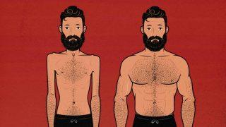 Guía del Entrenamiento de Hipertrofia para Hombres Delgados
