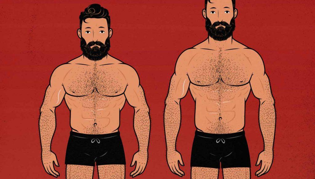 Ilustración de dos hombres con proporciones corporales diferentes