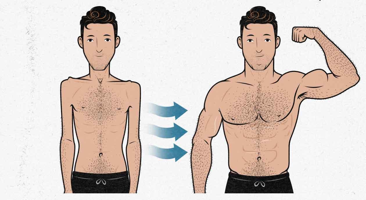 Ilustración del cambio de un hombre con el crecimiento muscular