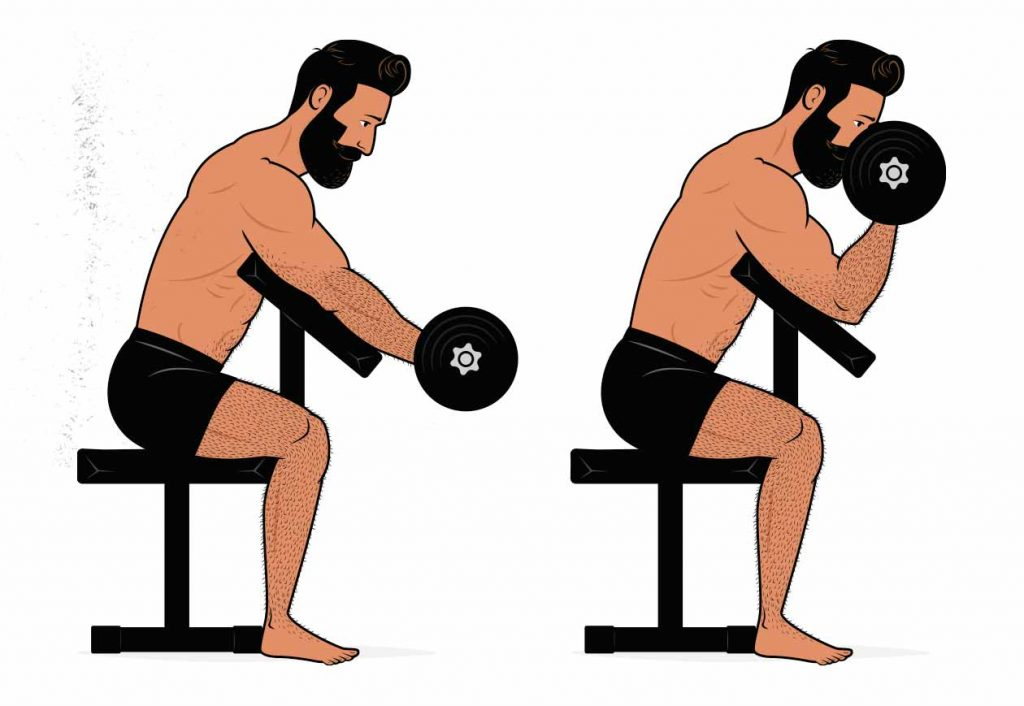 Illustration of a man doing a preacher curl for his biceps.