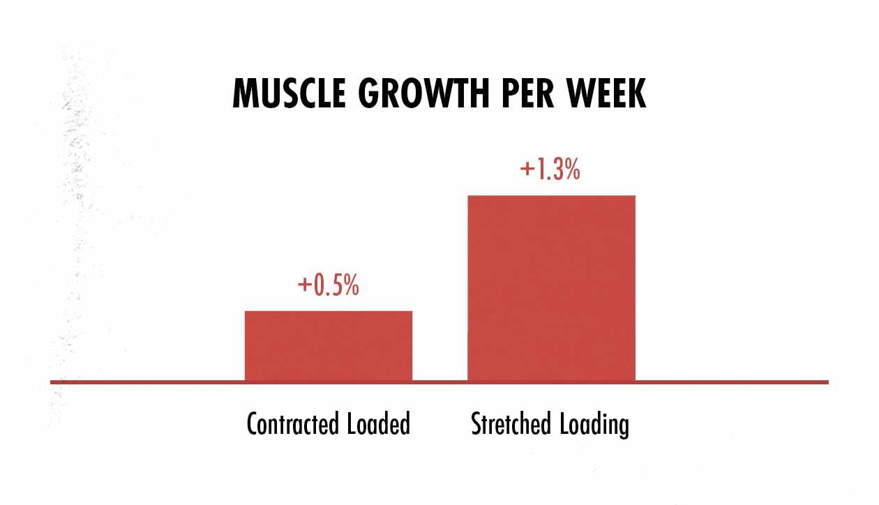 Graph showing differences in muscle growth depending on the strength curve of a lift.