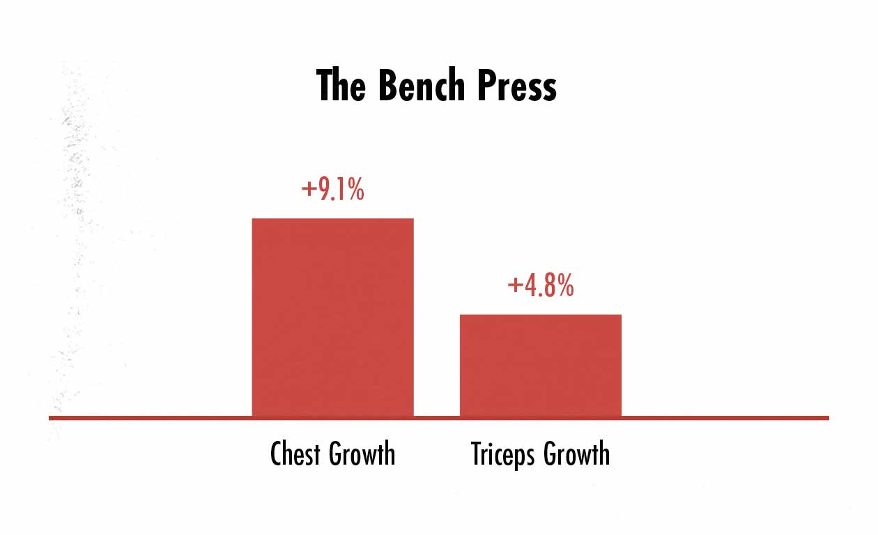 Graph showing differences in pec and triceps growth when doing the bench press.