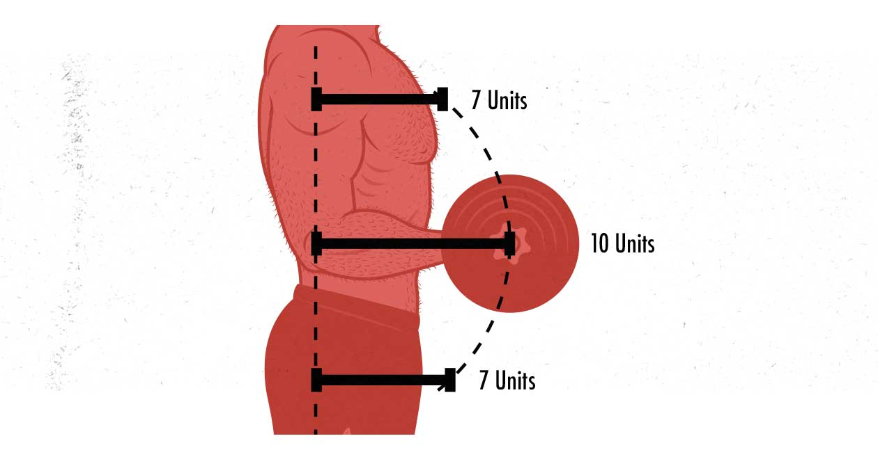 Diagram showing the resistance curve of the biceps curl.
