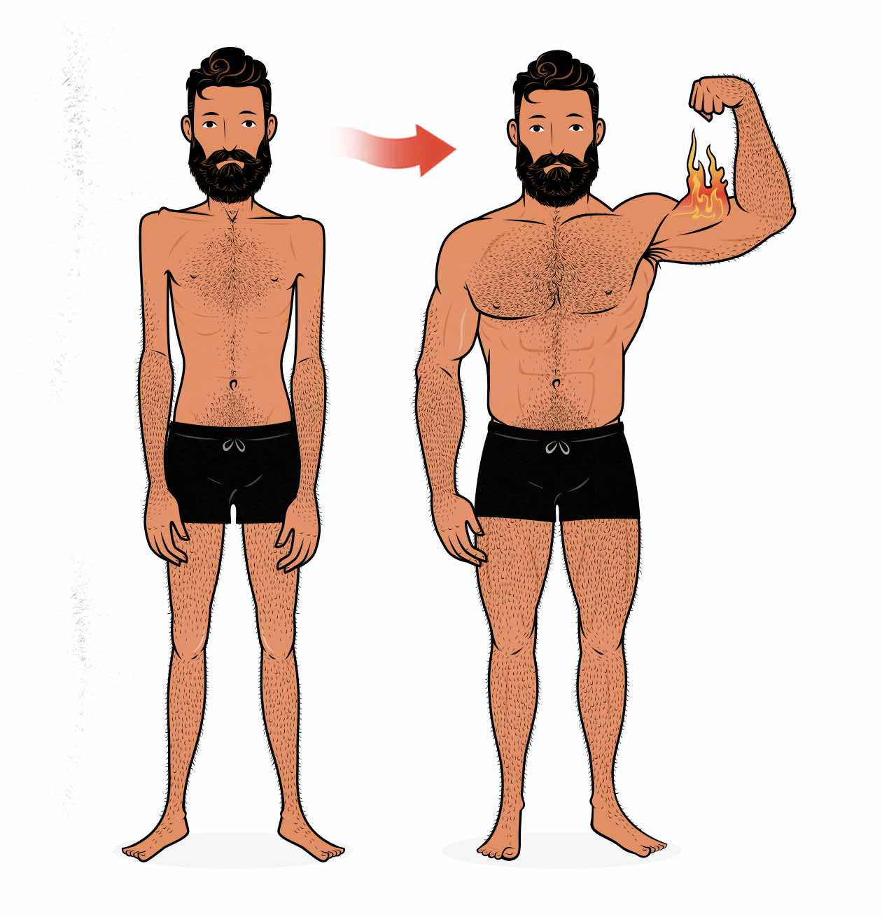 Before and after illustration of a skinny guy building muscle using a push/pull/legs workout routine.