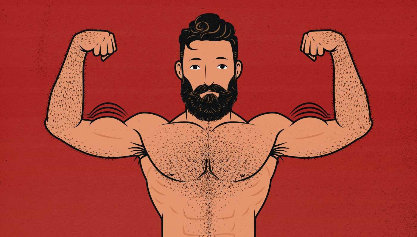 Illustration of a bodybuilder building bigger biceps.