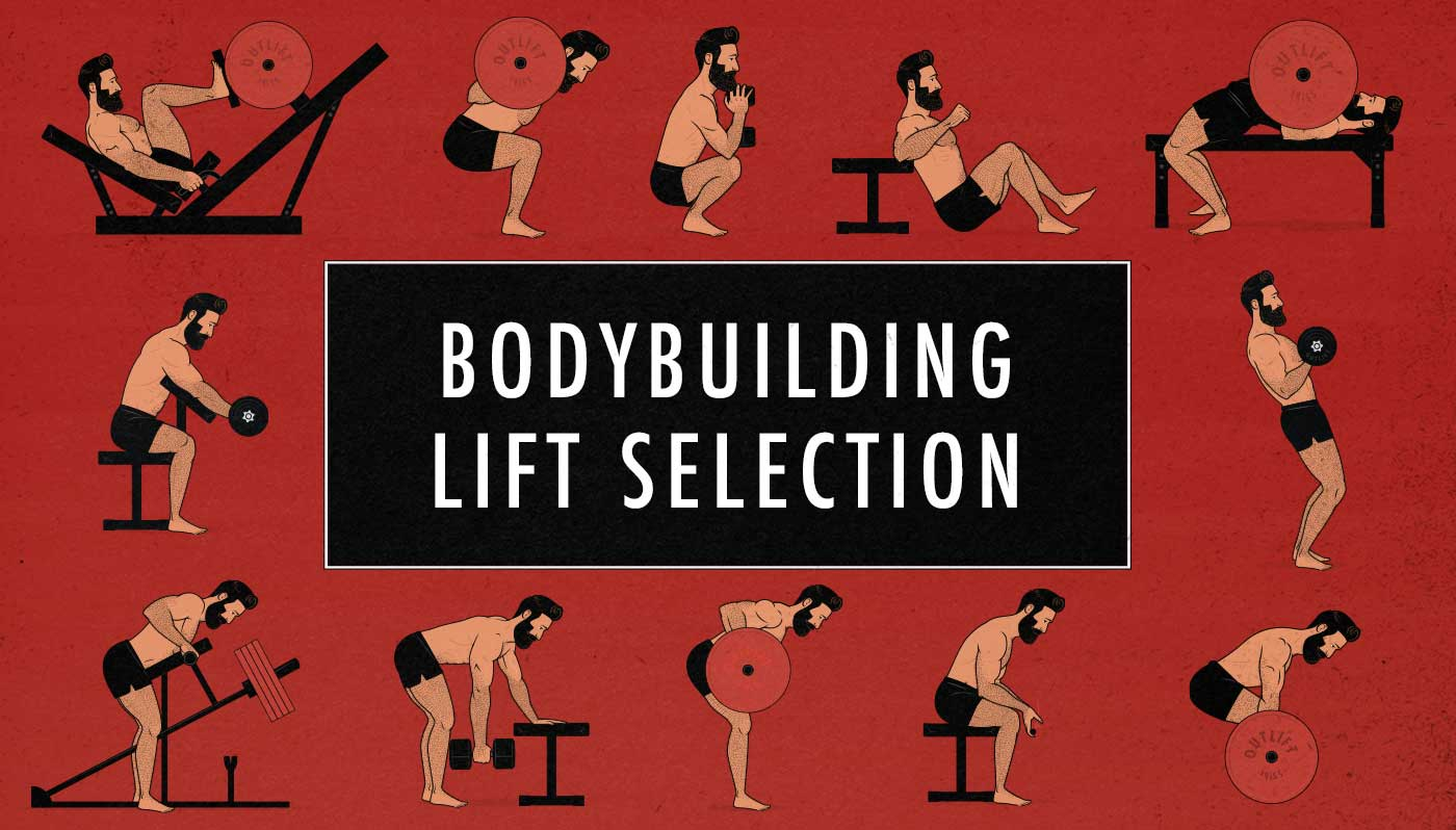 Illustration showing the different bodybuilding and hypertrophy lifts.