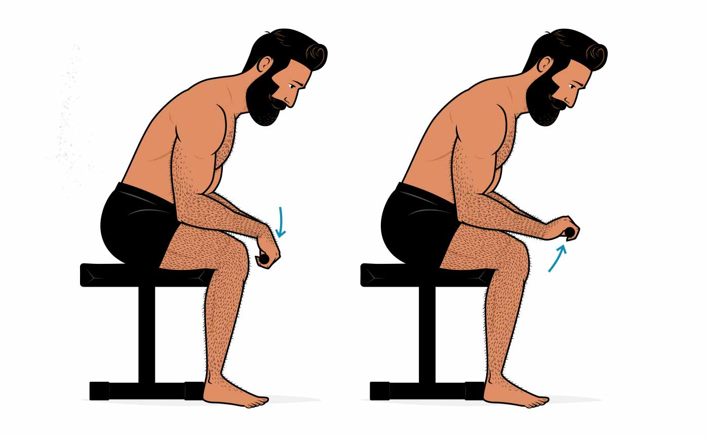 Illustration showing how to do wrist extensions to build bigger forearms.