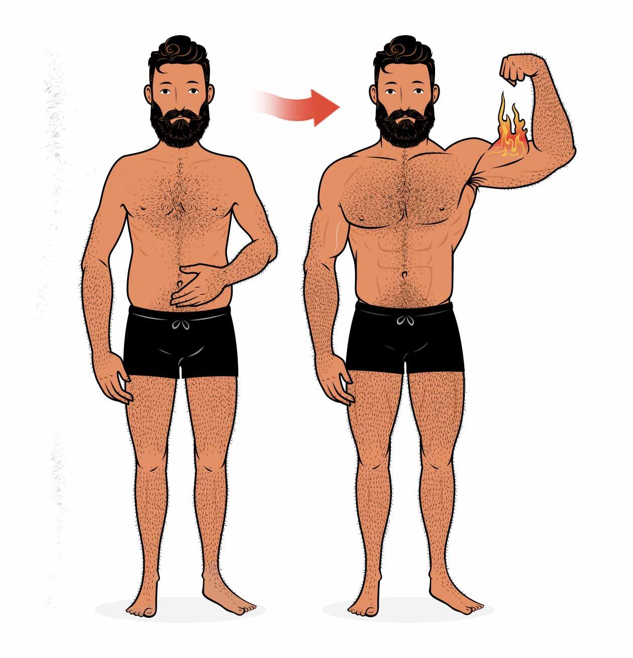 Ilustración mostrando a un hombre ganando músculo.