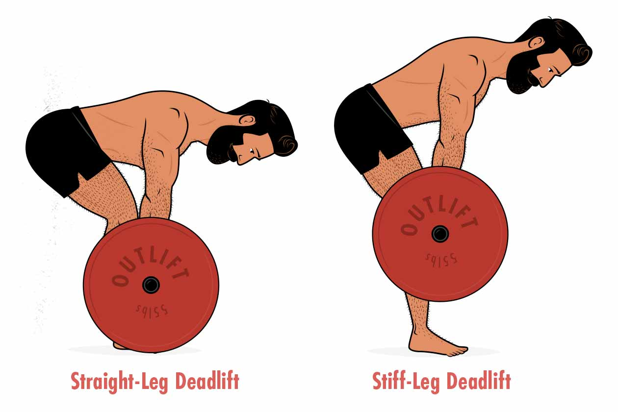 Illustration showing the differences between a stiff-leg deadlift vs a straight-leg deadlift.