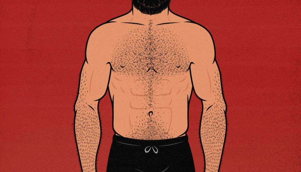 Illustration showing a man with a stubborn, lagging chest.