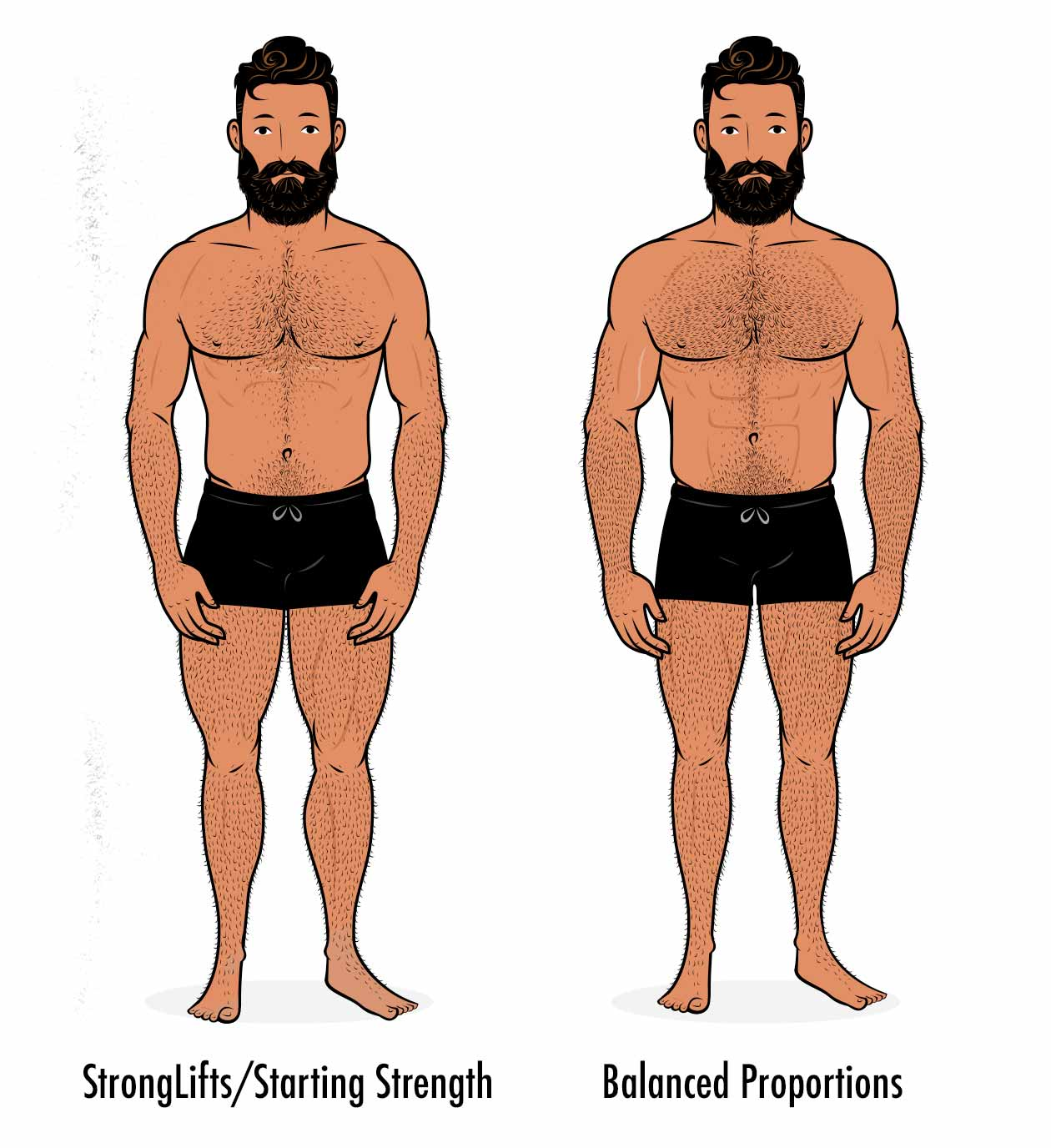 Illustration showing results from Starting Strength and StrongLifts 5x5, with more size in the lower body.