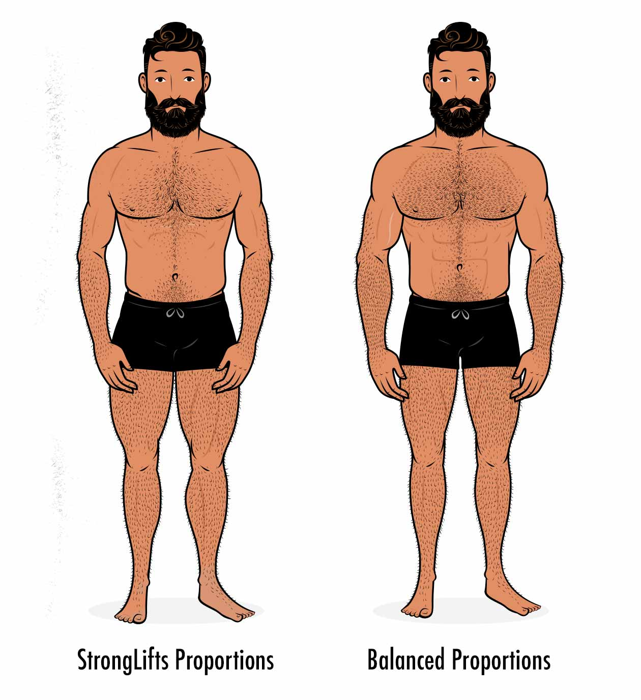 Illustration showing the results from the stronglifts 5x5 program, with the man building bigger legs and a smaller upper body.