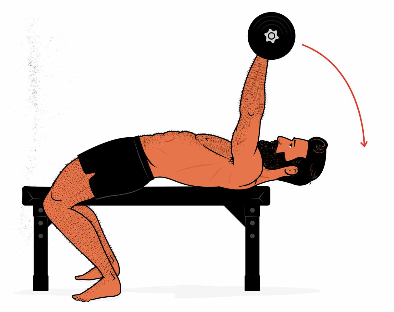 Illustration showing how to do the barbell pullover exercise.