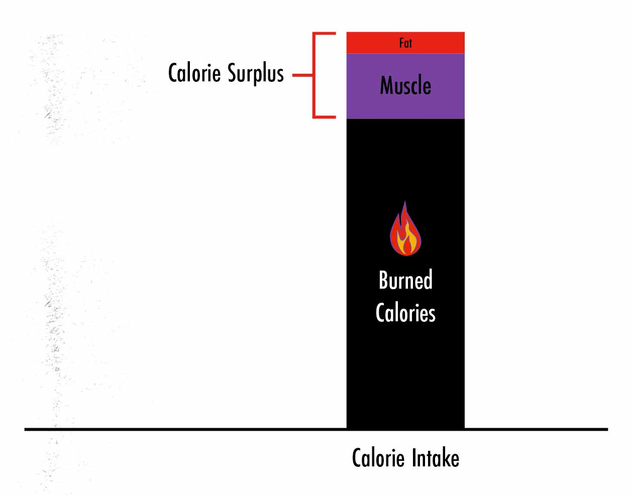 Graph showing that if we can gain muscle faster, we'll have fewer surplus calories, and thus we'll gain less fat while bulking.