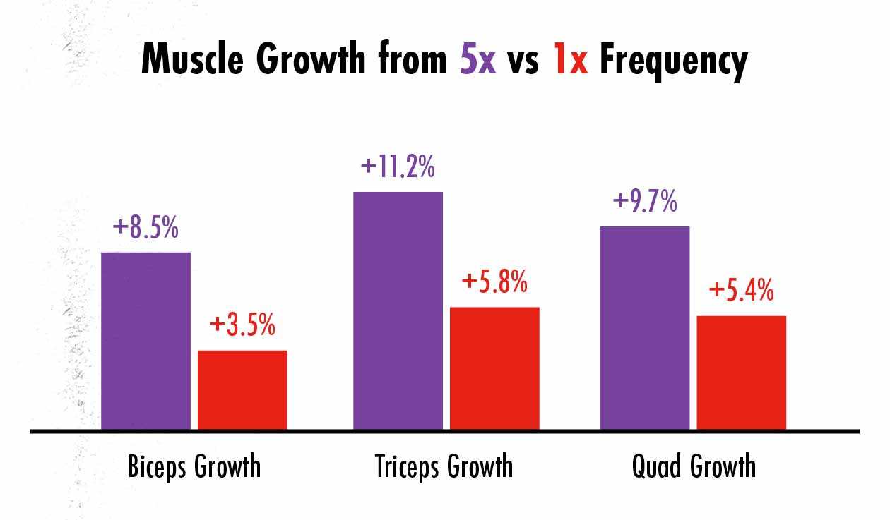 A graph showing that high-frequency training builds muscle faster than lower-frequency training.