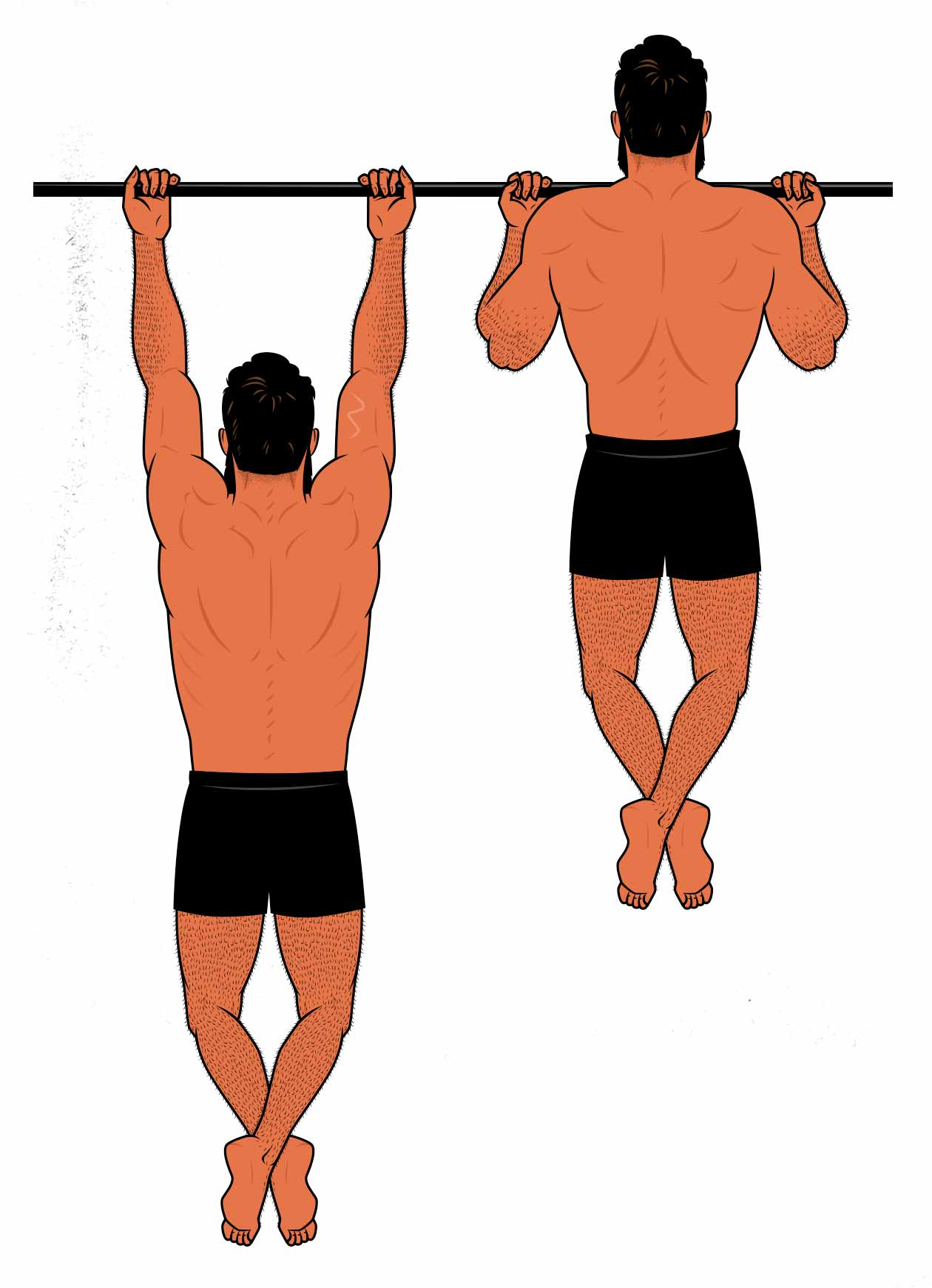 Illustration of a man doing chin-ups to work out his back.