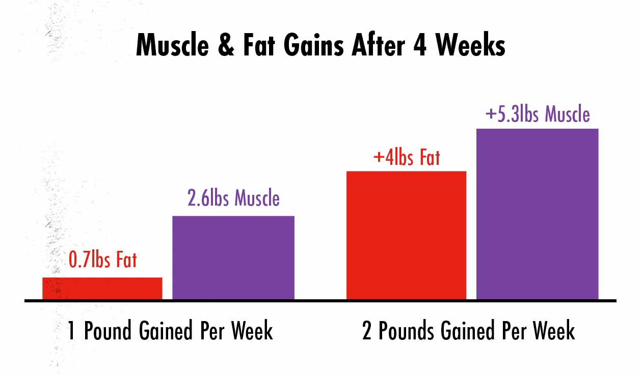 Graph showing that gaining weight more quickly causes us to gain more muscle and fat.
