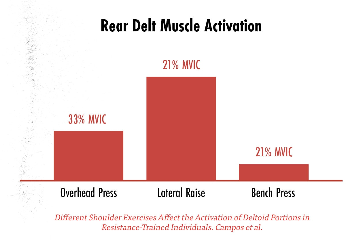 Graph showing the best exercises for working our rear delts as measured by EMG.