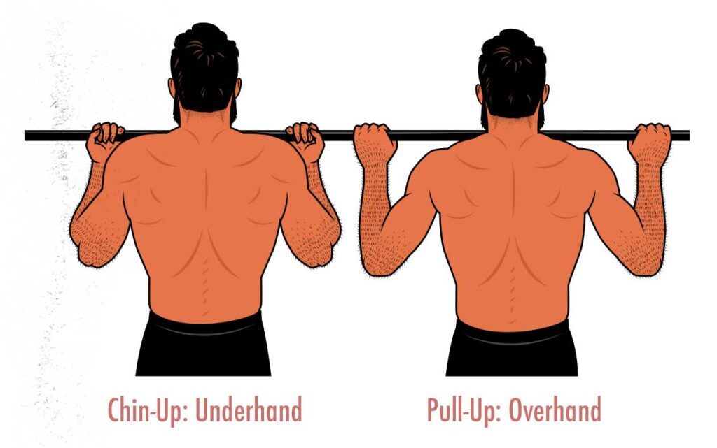 Diagram showing the difference between chin-ups and pull-ups.