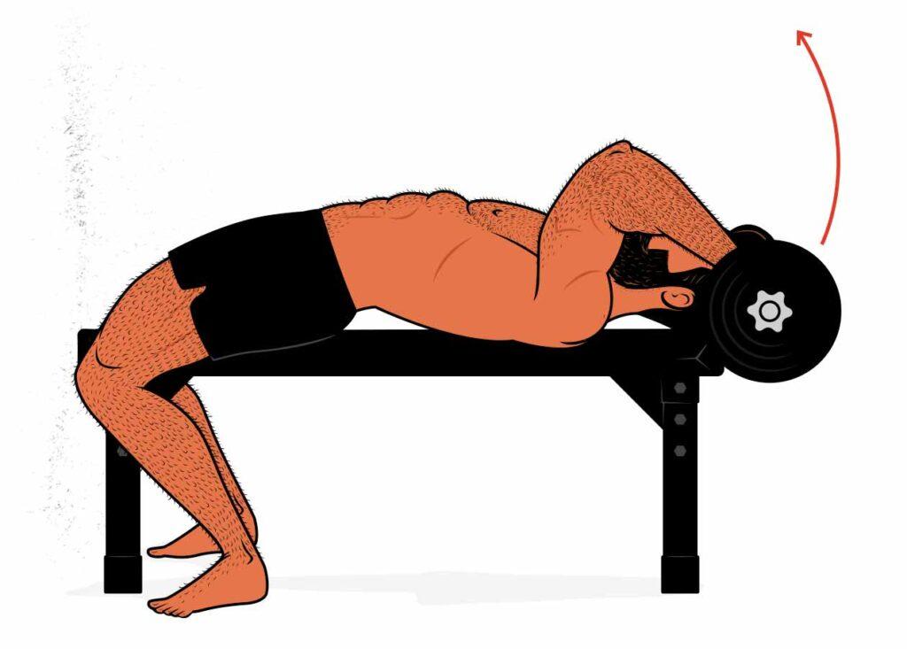 Illustration of a bodybuilder demonstrating how to do the skull crusher.