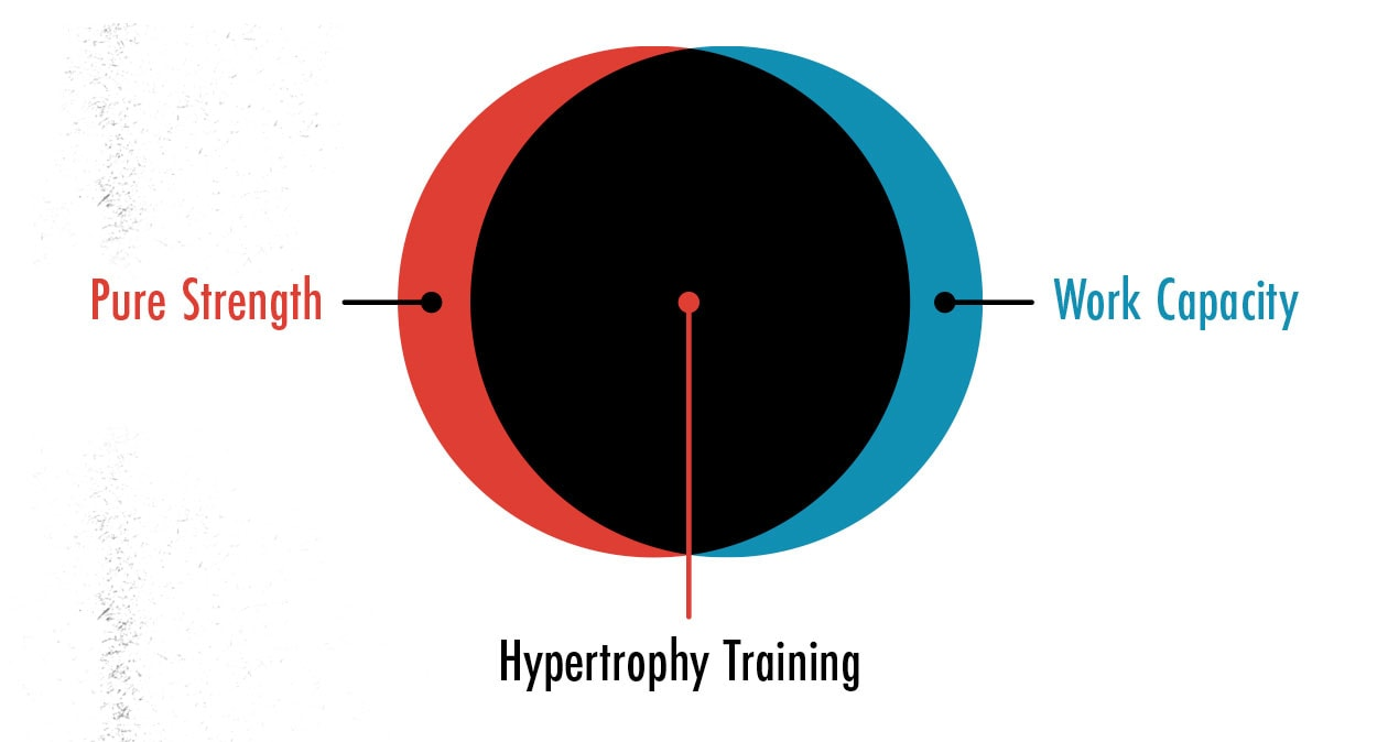 Diagram showing how hypertrophy training is good for gaining both muscle strength and endurance.