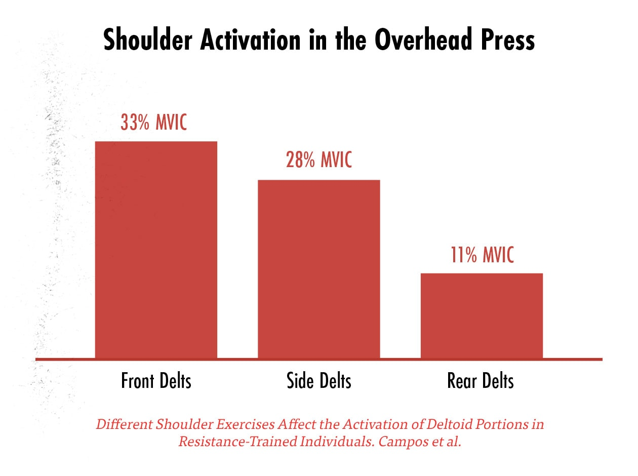 Graph showing the muscle activation of the front delts, side delts, and rear delts in the overhead press as measured by EMG.
