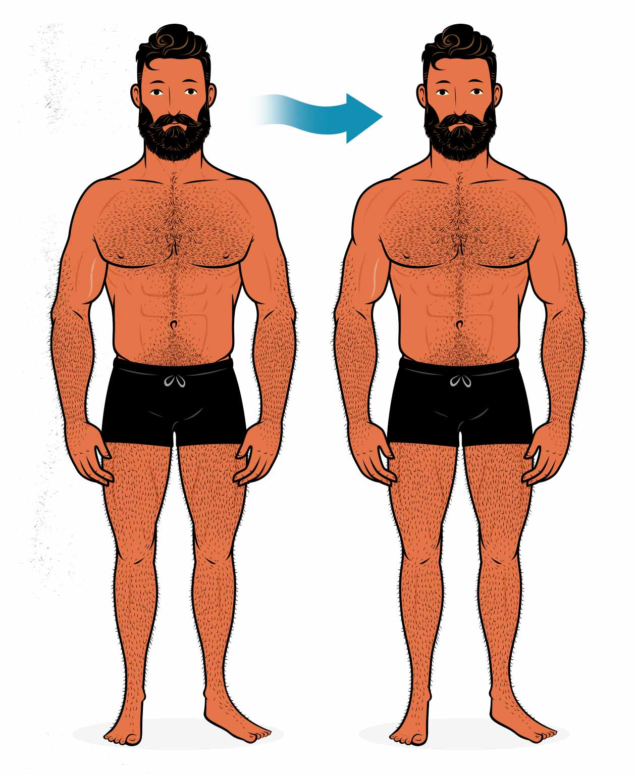 Illustration of a bodybuilder who built bigger shoulder muscles with shoulder workouts.