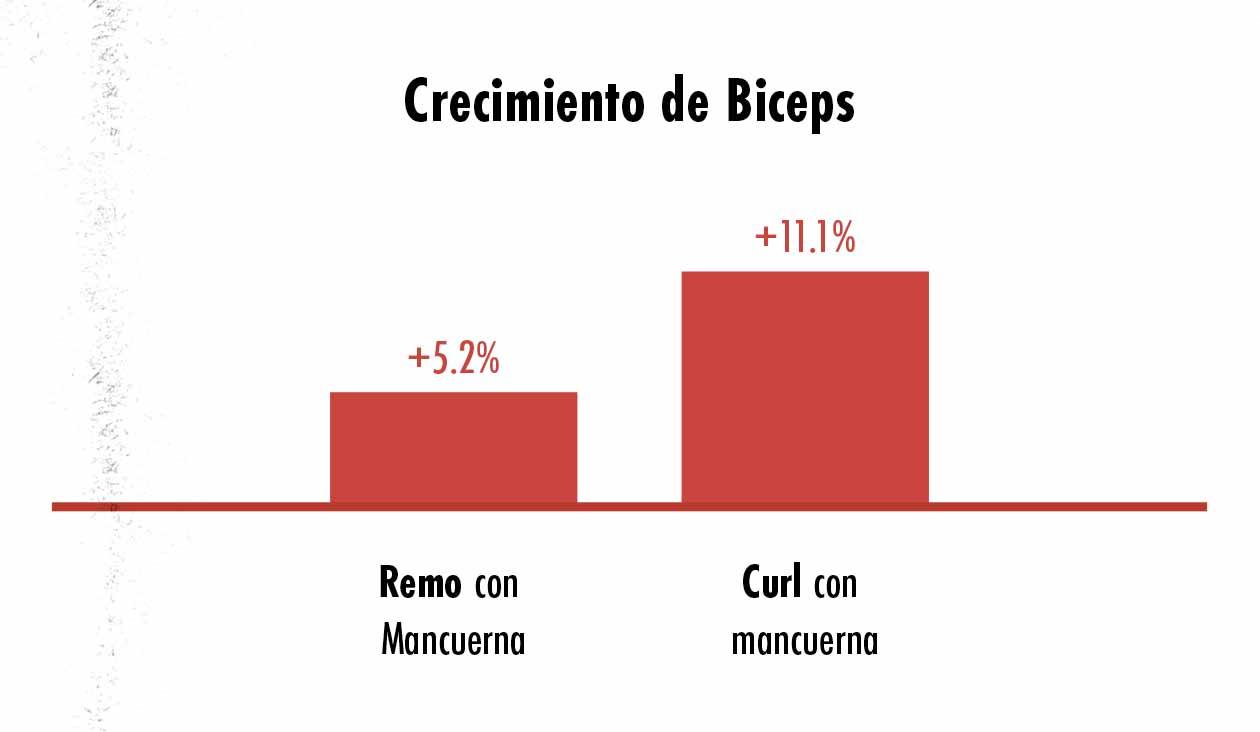 Gráfico que muestra que los curls son mejores que los remos para el crecimiento de los bíceps.