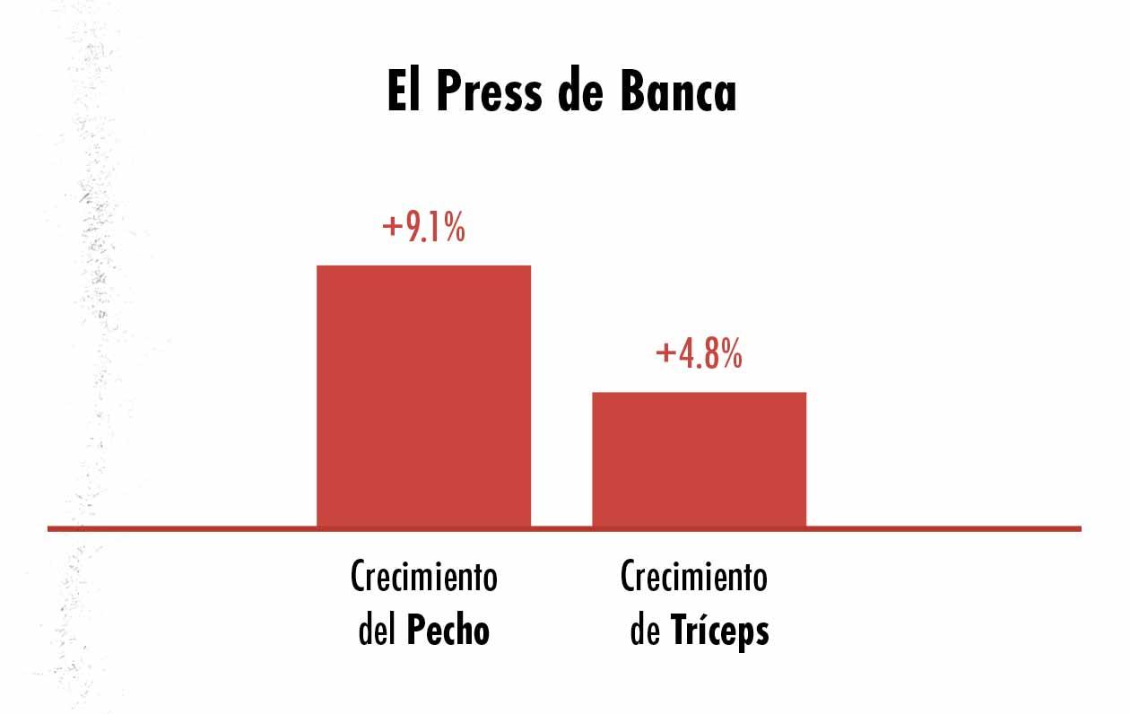 Gráfica del crecimiento del pecho y de los tríceps causado por el press de banca.