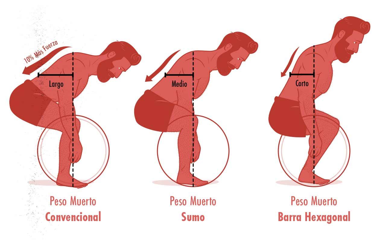 Ilustración de la diferencia entre el peso muerto convencional, el peso muerto sumo, y el peso muerto con barra hexagonal.