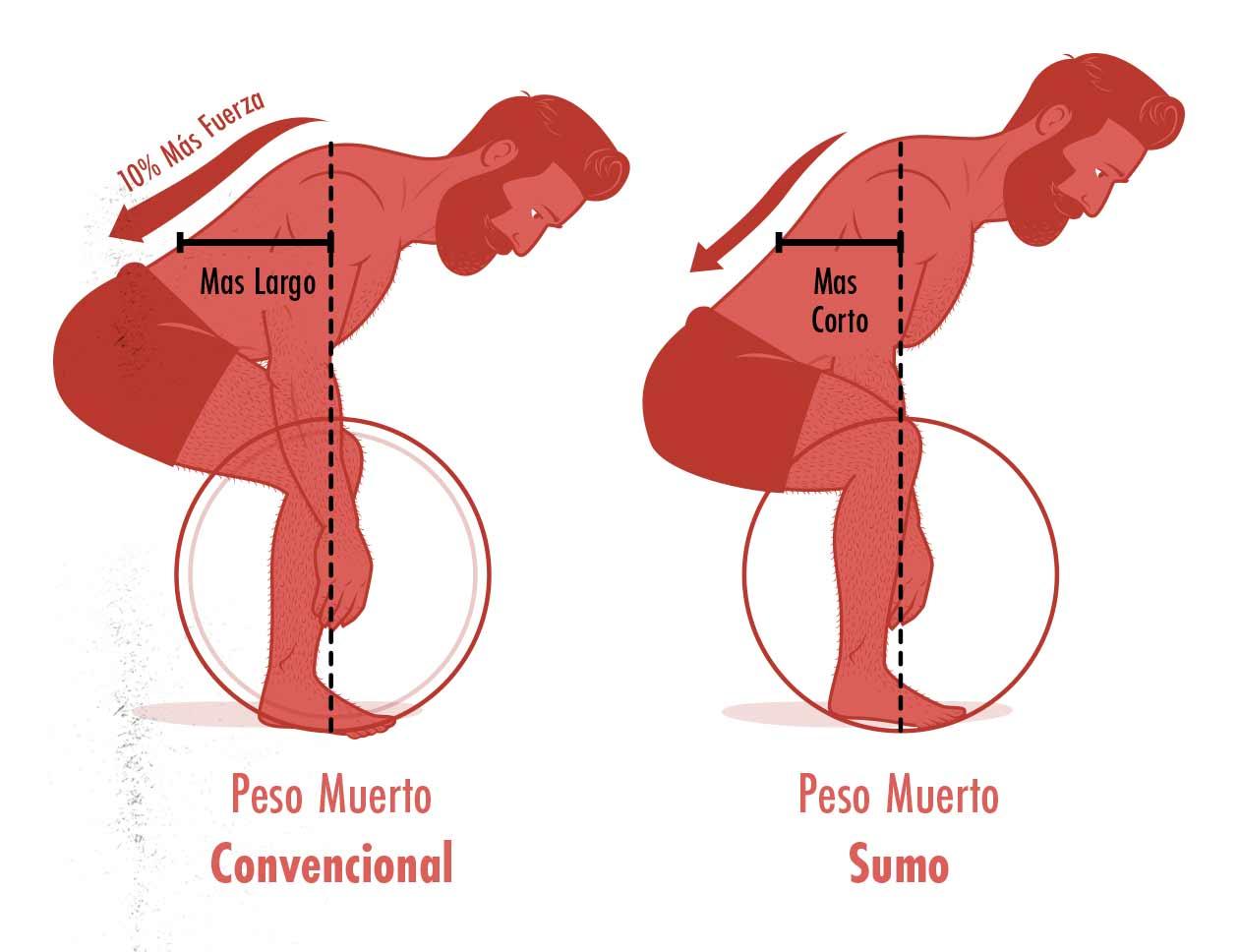 Ilustración de la diferencia en la demanda del peso muerto convencional y el peso muerto sumo.