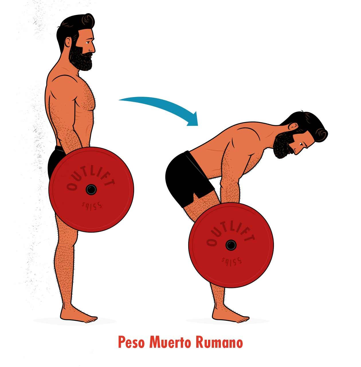 Ilustración de un hombre haciendo un peso muerto rumano.