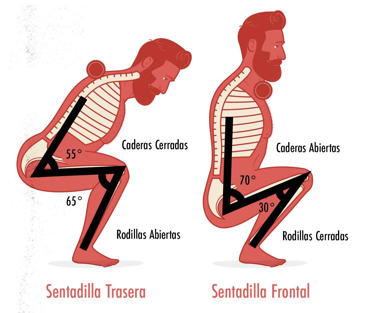 Ilustración de la diferencia de la sentadilla trasera y la sentadilla frontal.