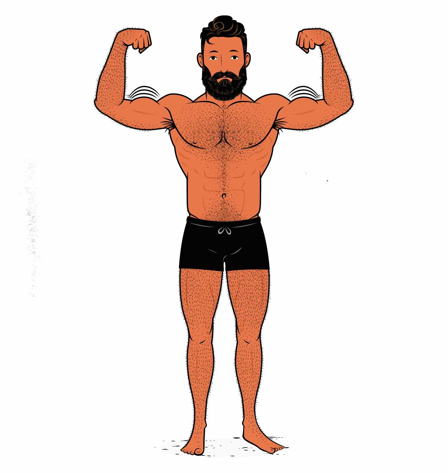 Outlift illustration of a bodybuilder building bigger biceps.